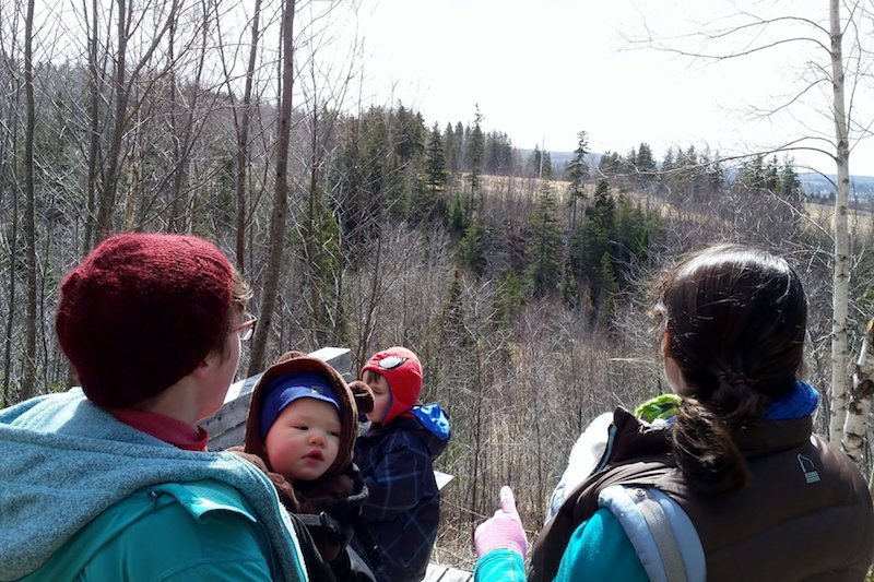 hike it baby antigonish 3